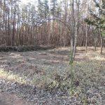 日当たり良好 立木伐採済 閑静 257坪 手数料不要 富士見高原 ほ地区 土地 300万円